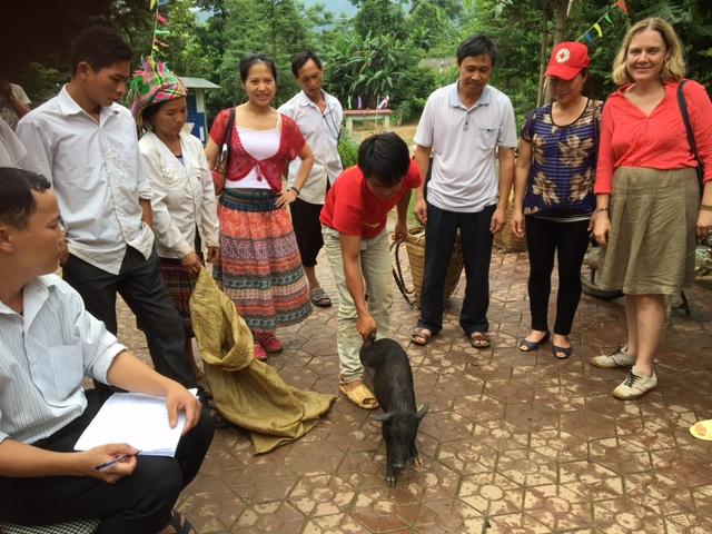 don cochon vietnam